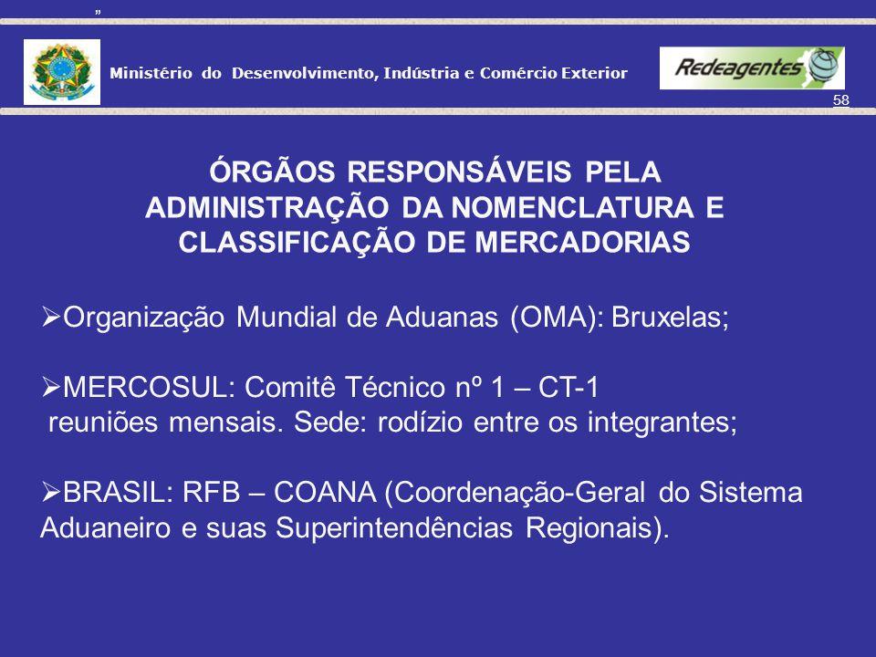 ÓRGÃOS RESPONSÁVEIS PELA
