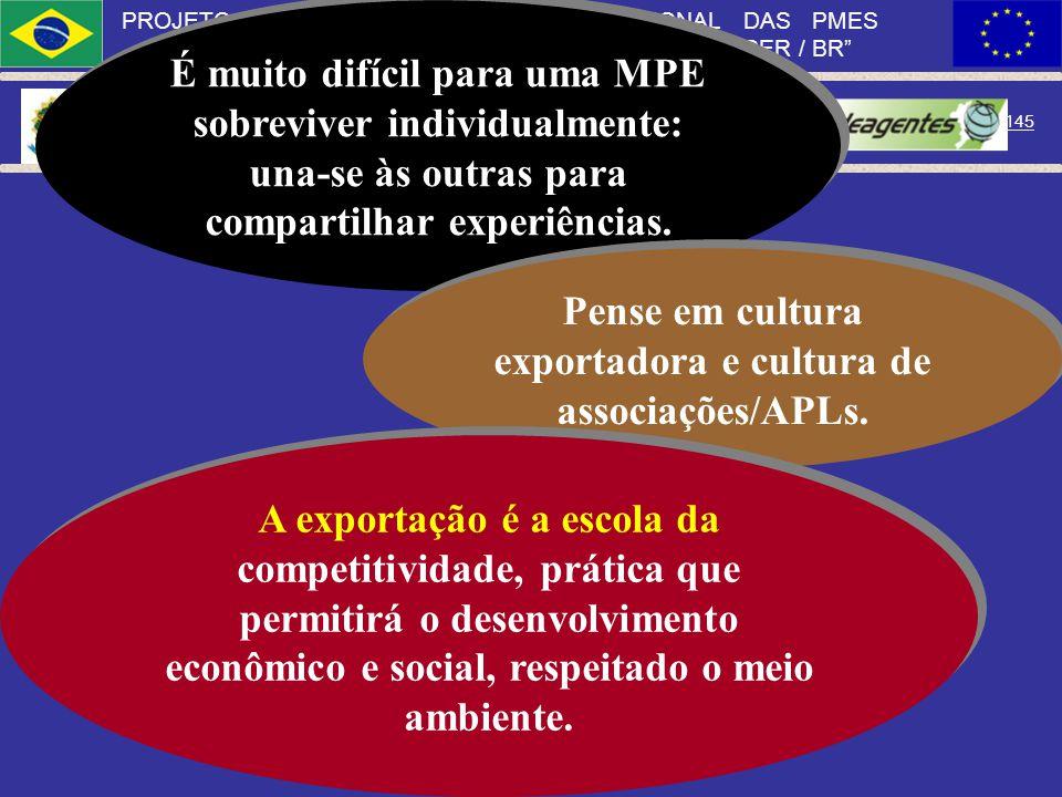Pense em cultura exportadora e cultura de associações/APLs.