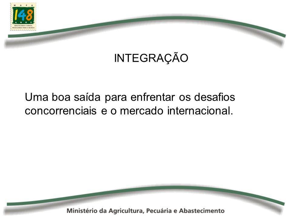 INTEGRAÇÃO Uma boa saída para enfrentar os desafios concorrenciais e o mercado internacional.