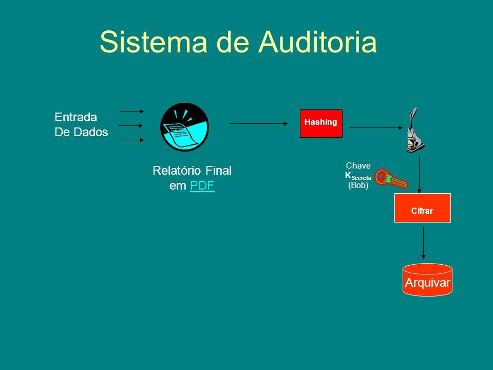 Sistema de Auditoria Entrada De Dados Relatório Final em PDF Arquivar