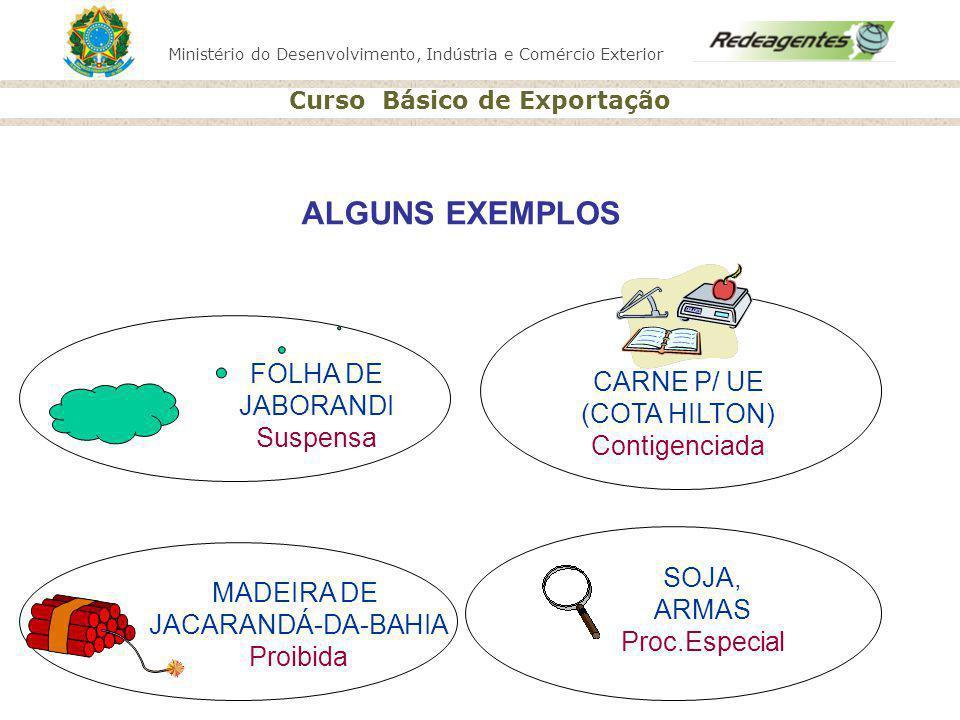 ALGUNS EXEMPLOS FOLHA DE CARNE P/ UE JABORANDI (COTA HILTON) Suspensa