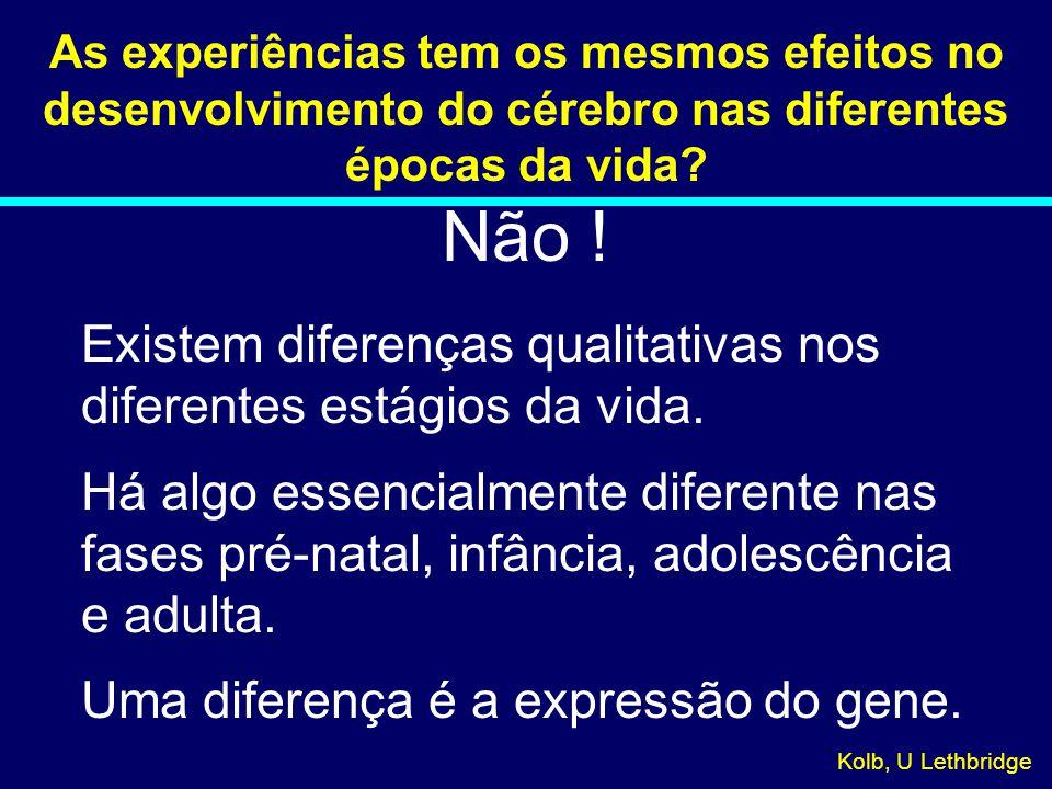 Não ! Existem diferenças qualitativas nos diferentes estágios da vida.