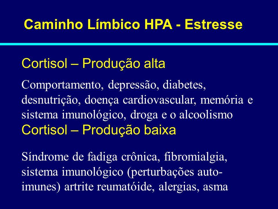 Caminho Límbico HPA - Estresse