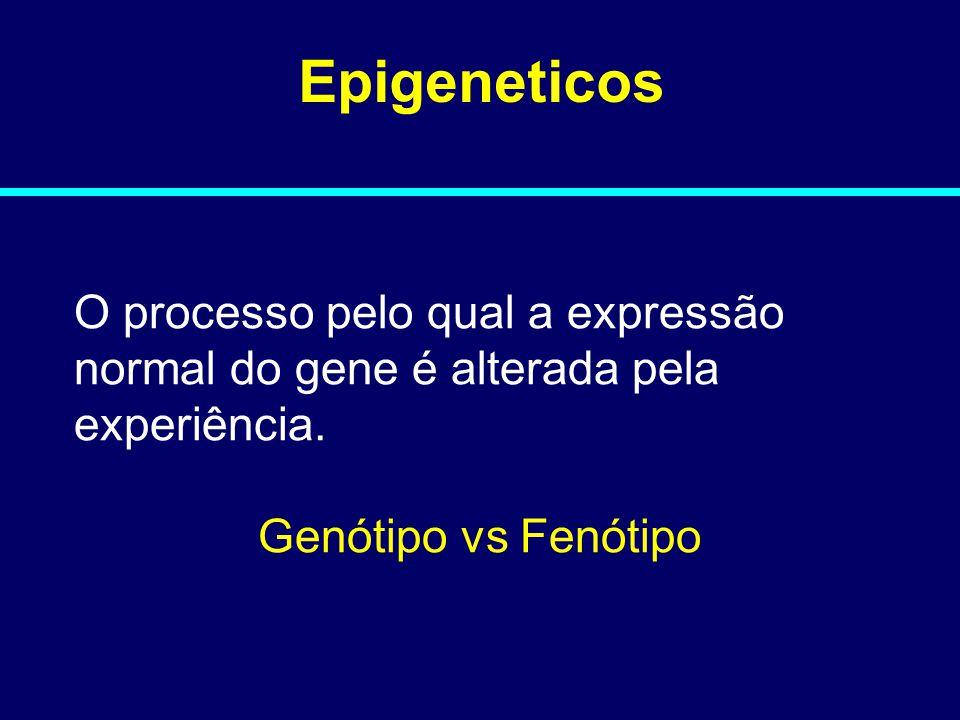 08-014 Epigeneticos. O processo pelo qual a expressão normal do gene é alterada pela experiência.