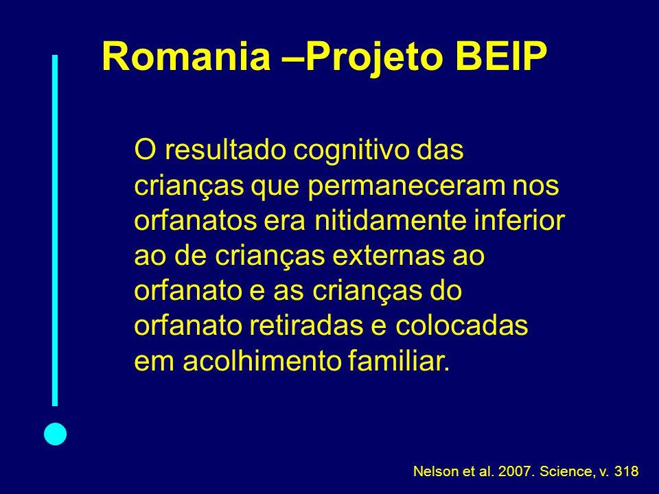 08-010 Romania –Projeto BEIP.