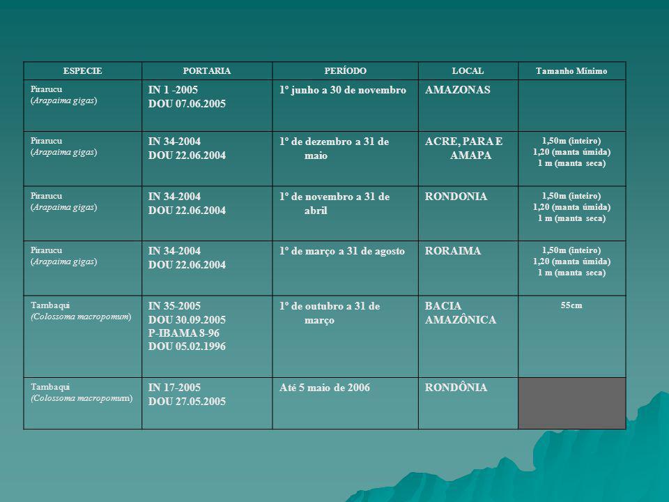 IN 1 -2005 DOU 07.06.2005 1º junho a 30 de novembro AMAZONAS