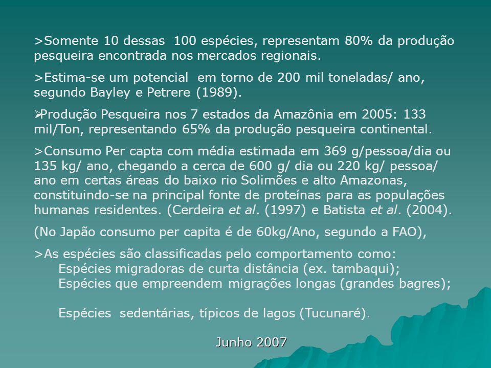 >Somente 10 dessas 100 espécies, representam 80% da produção pesqueira encontrada nos mercados regionais.