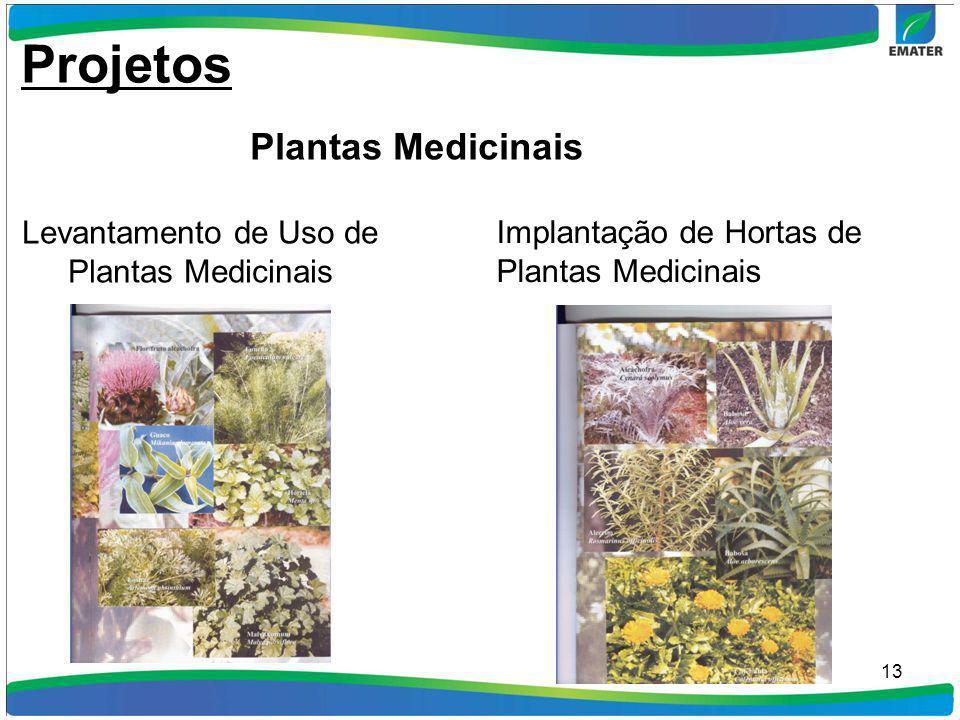 Levantamento de Uso de Plantas Medicinais