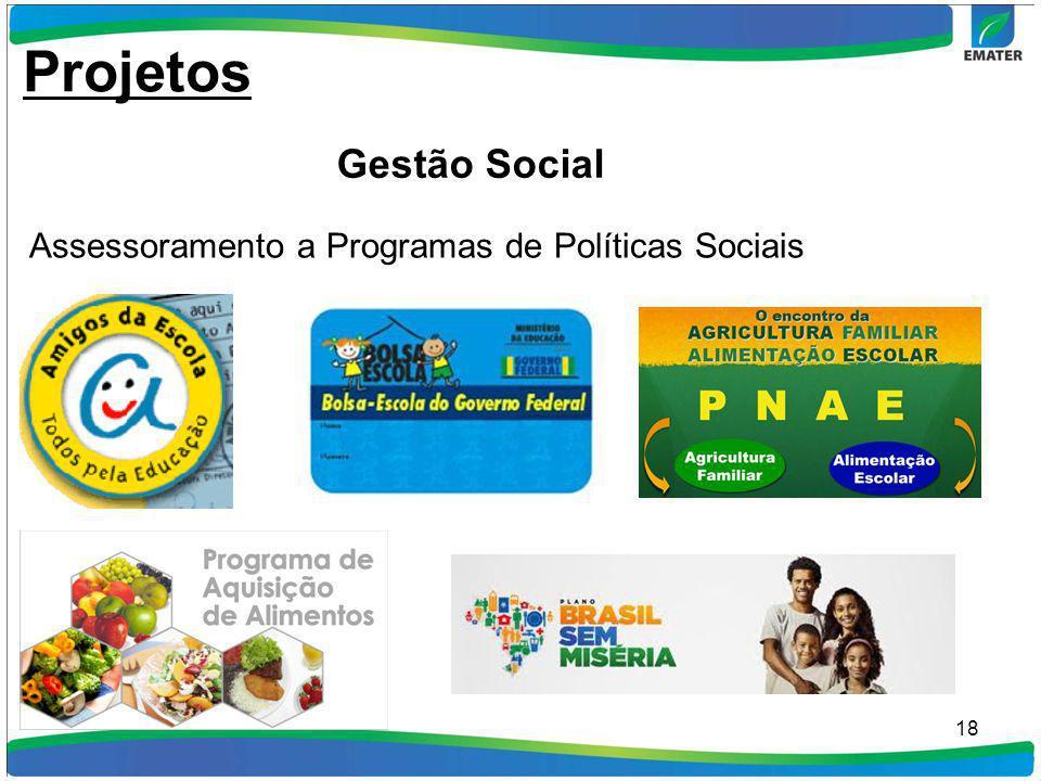 Projetos Gestão Social Assessoramento a Programas de Políticas Sociais