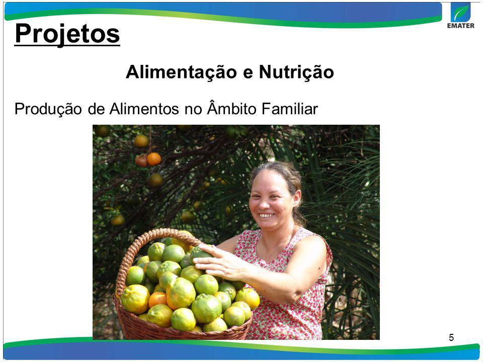 Projetos Alimentação e Nutrição
