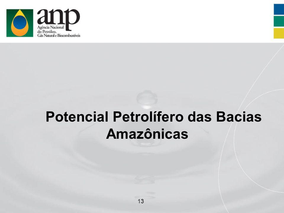 Potencial Petrolífero das Bacias Amazônicas