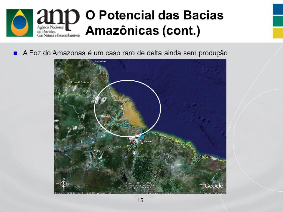 O Potencial das Bacias Amazônicas (cont.)