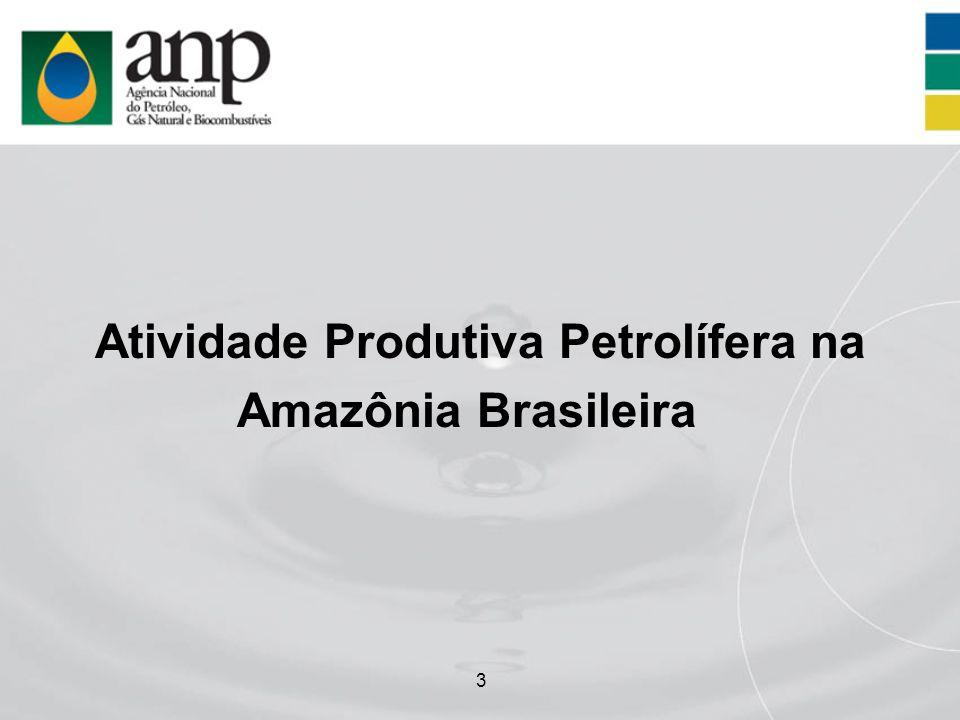 Atividade Produtiva Petrolífera na