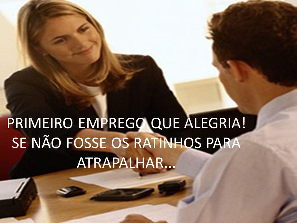 PRIMEIRO EMPREGO QUE ALEGRIA! SE NÃO FOSSE OS RATINHOS PARA ATRAPALHAR...