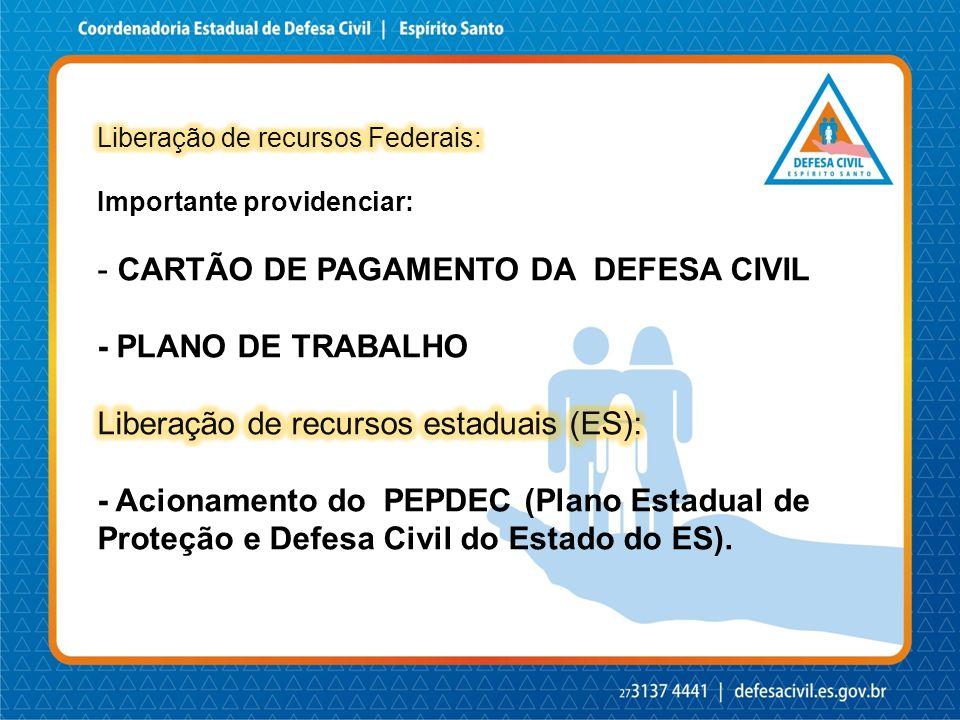 CARTÃO DE PAGAMENTO DA DEFESA CIVIL - PLANO DE TRABALHO