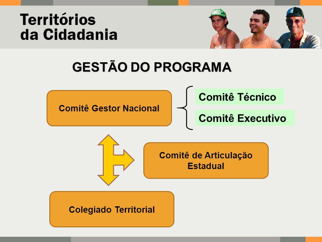 GESTÃO DO PROGRAMA Comitê Técnico Comitê Executivo