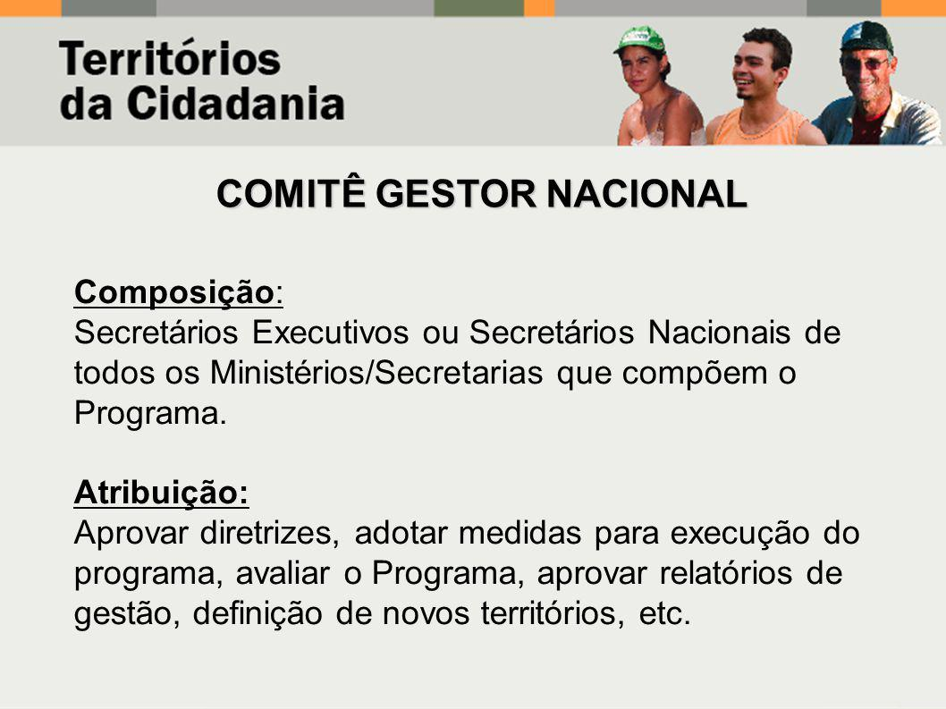 COMITÊ GESTOR NACIONAL