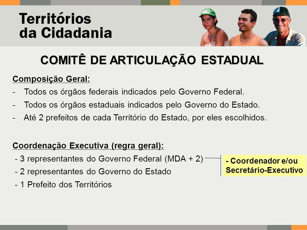 COMITÊ DE ARTICULAÇÃO ESTADUAL