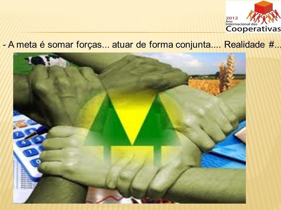 A meta é somar forças... atuar de forma conjunta.... Realidade #...