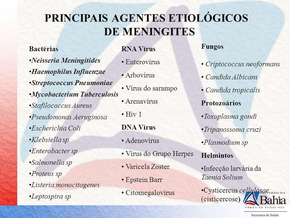 PRINCIPAIS AGENTES ETIOLÓGICOS