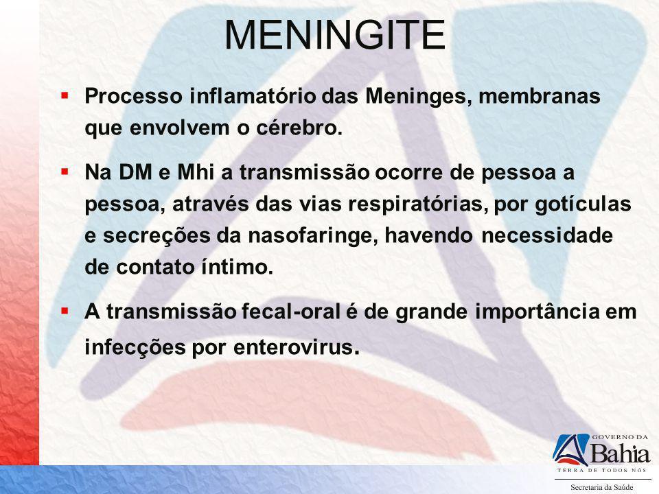 MENINGITE Processo inflamatório das Meninges, membranas que envolvem o cérebro.