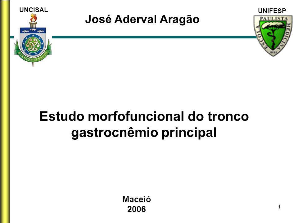 Estudo morfofuncional do tronco gastrocnêmio principal