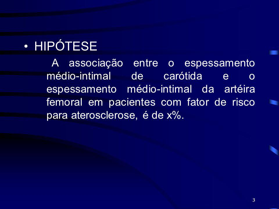 HIPÓTESE