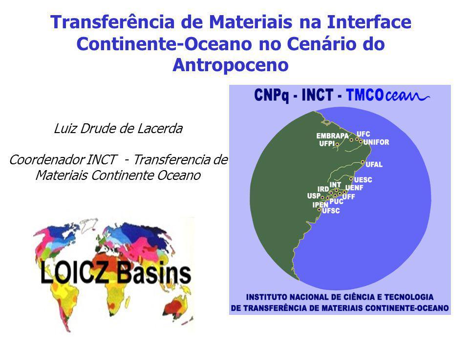Coordenador INCT - Transferencia de Materiais Continente Oceano