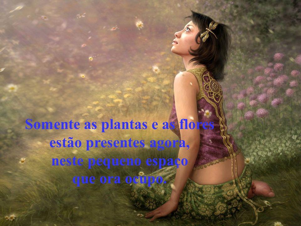 Somente as plantas e as flores