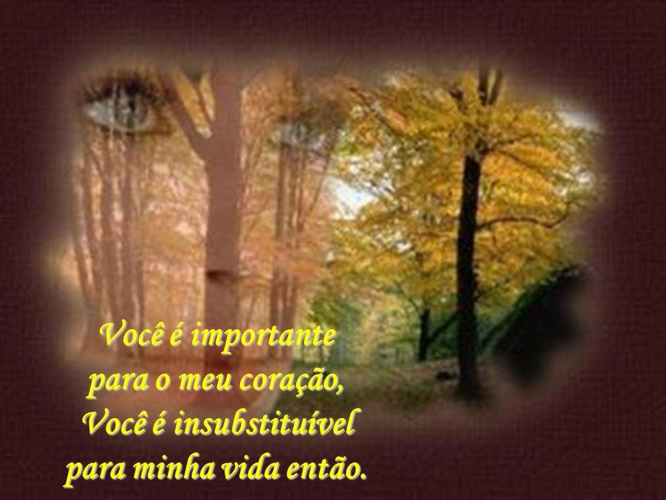 Você é importante para o meu coração, Você é insubstituível para minha vida então.
