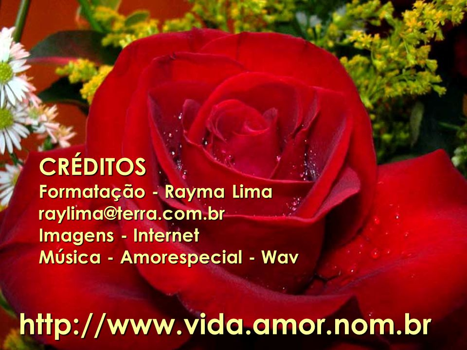 http://www.vida.amor.nom.br CRÉDITOS Formatação - Rayma Lima