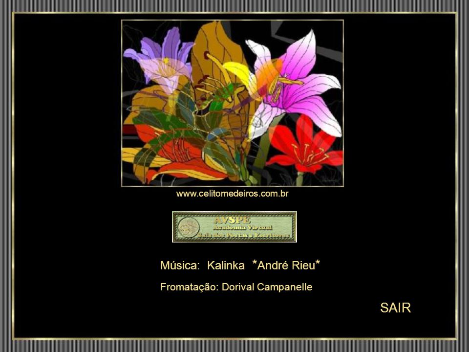 SAIR Música: Kalinka *André Rieu* www.celitomedeiros.com.br