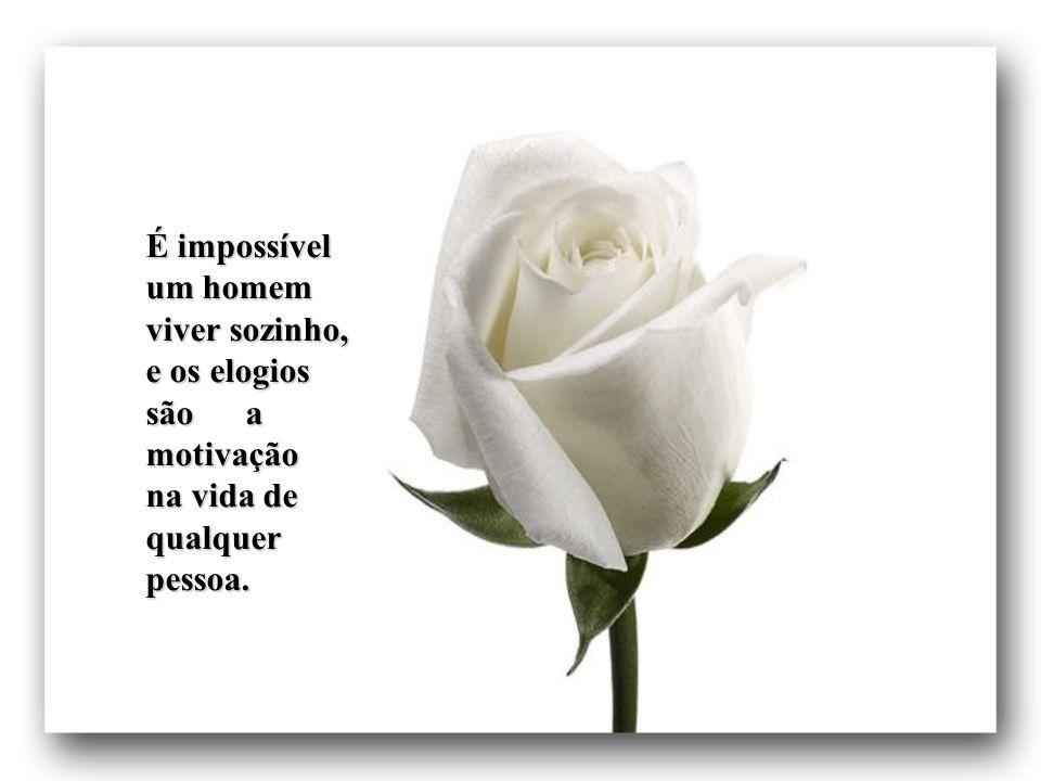 É impossível um homem viver sozinho, e os elogios são a motivação na vida de qualquer pessoa.
