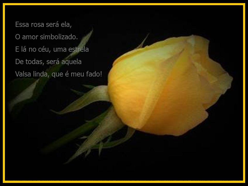 Essa rosa será ela, O amor simbolizado. E lá no céu, uma estrela.