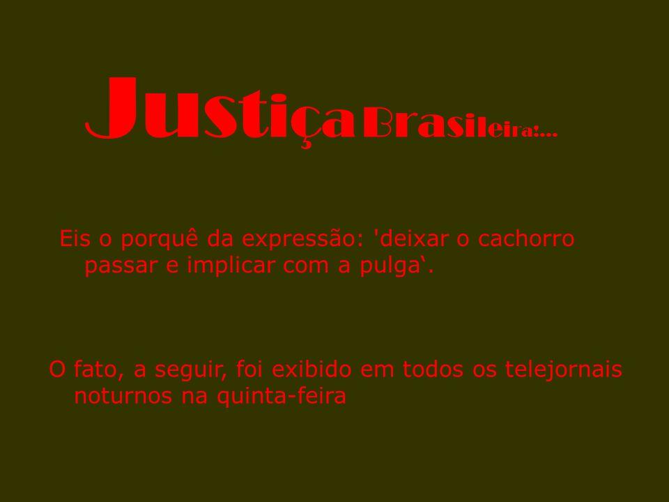 Justiça Brasileira!... Eis o porquê da expressão: deixar o cachorro passar e implicar com a pulga'.