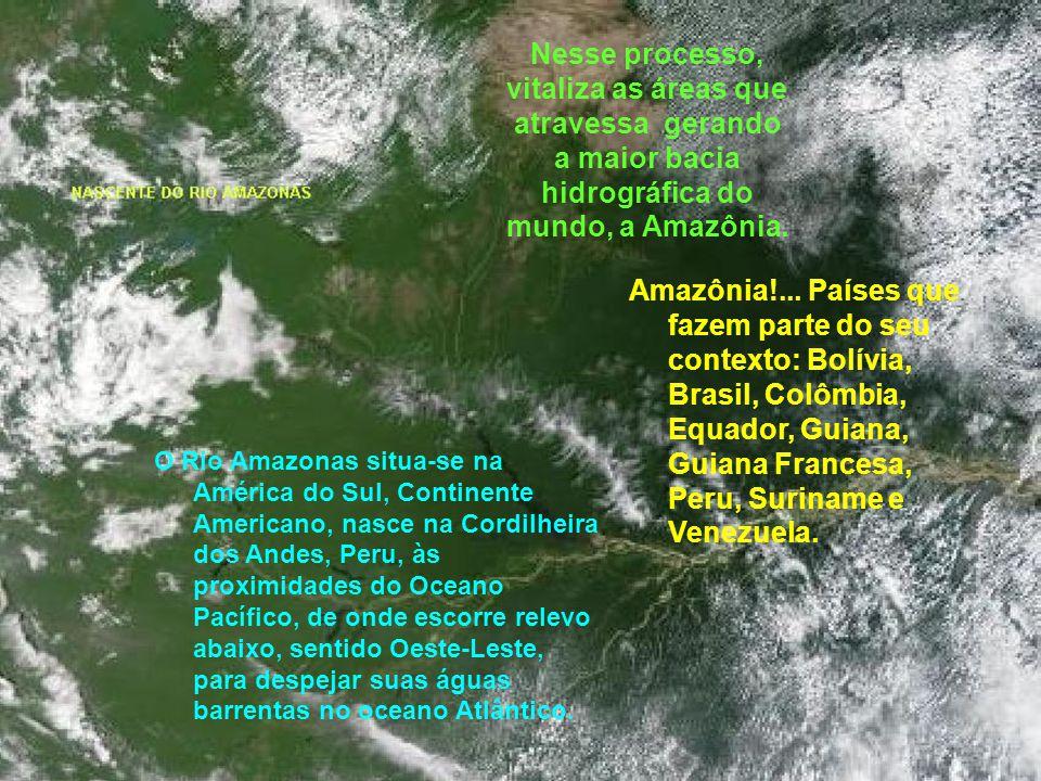Nesse processo, vitaliza as áreas que atravessa gerando a maior bacia hidrográfica do mundo, a Amazônia.