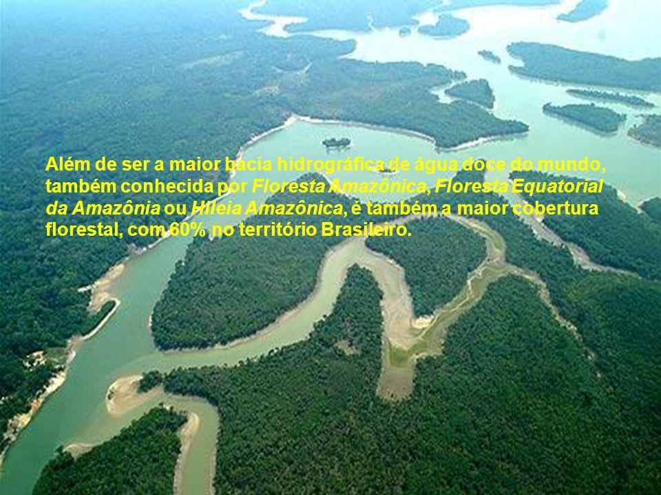 Além de ser a maior bacia hidrográfica de água doce do mundo, também conhecida por Floresta Amazônica, Floresta Equatorial da Amazônia ou Hileia Amazônica, é também a maior cobertura florestal, com 60% no território Brasileiro.