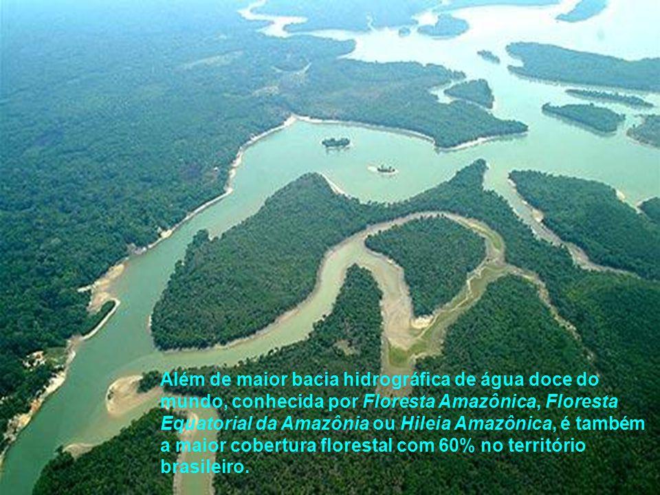 Além de maior bacia hidrográfica de água doce do mundo, conhecida por Floresta Amazônica, Floresta Equatorial da Amazônia ou Hileia Amazônica, é também a maior cobertura florestal com 60% no território brasileiro.