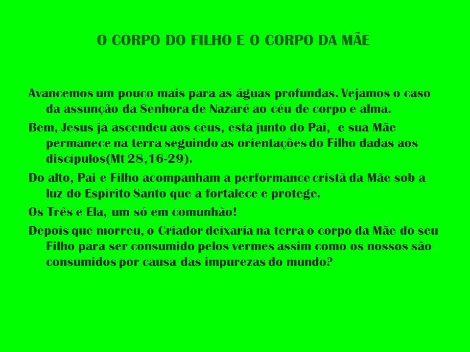 O CORPO DO FILHO E O CORPO DA MÃE