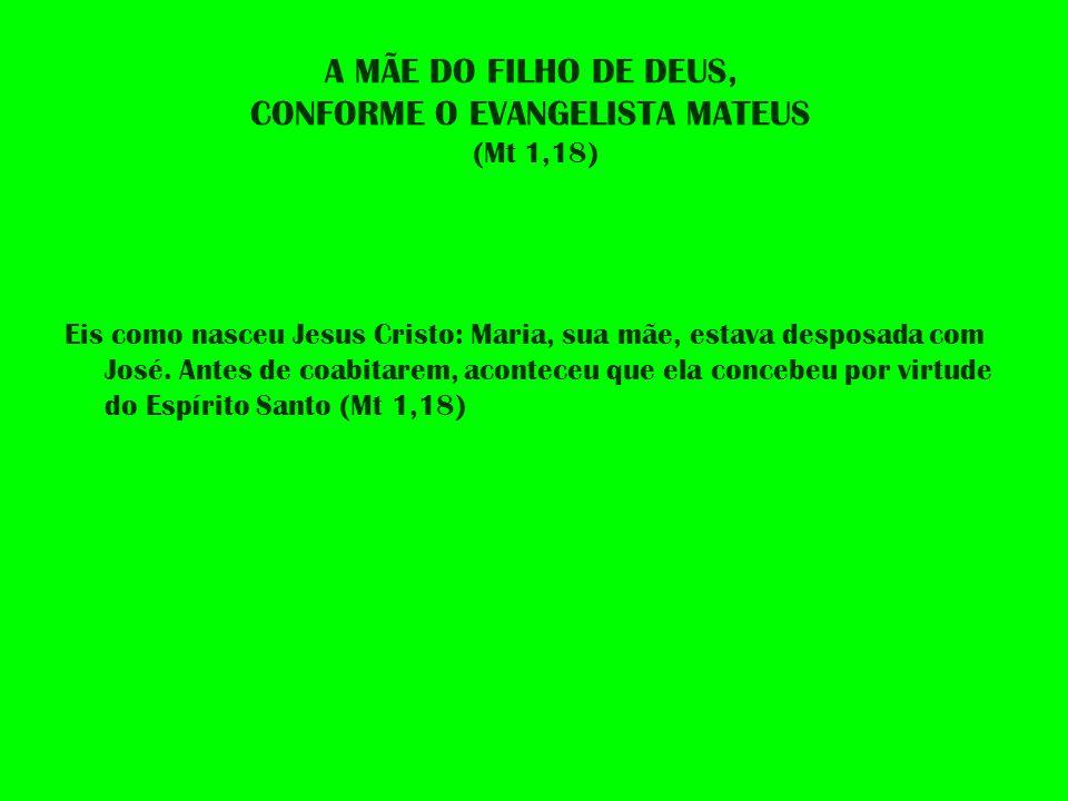 A MÃE DO FILHO DE DEUS, CONFORME O EVANGELISTA MATEUS (Mt 1,18)
