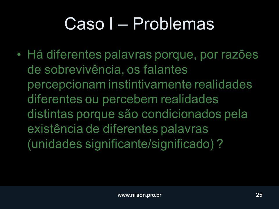 Caso I – Problemas