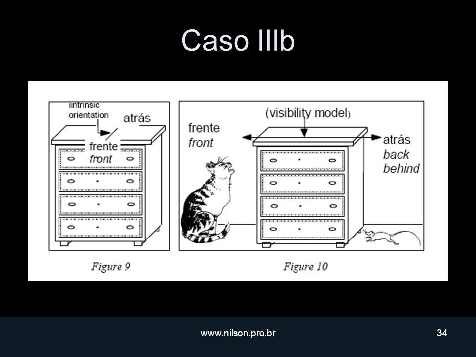Caso IIIb www.nilson.pro.br