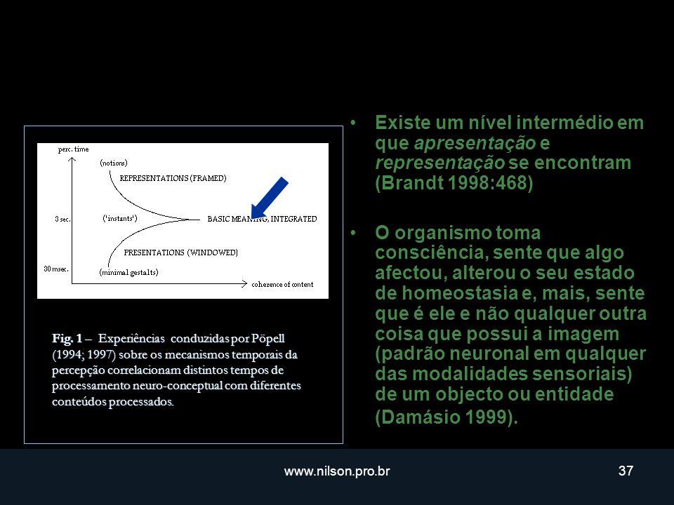 Existe um nível intermédio em que apresentação e representação se encontram (Brandt 1998:468)