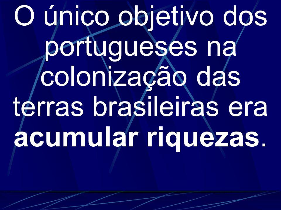 O único objetivo dos portugueses na colonização das terras brasileiras era acumular riquezas.