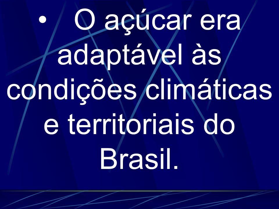 • O açúcar era adaptável às condições climáticas e territoriais do Brasil.
