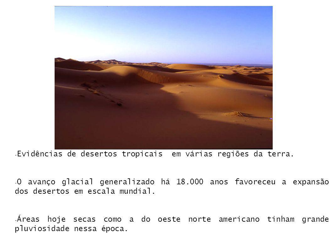 Evidências de desertos tropicais em várias regiões da terra.