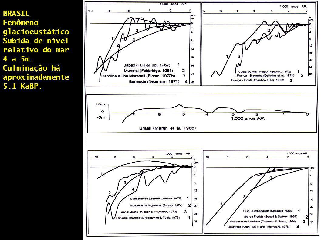 BRASIL Fenômeno glacioeustático. Subida de nível relativo do mar 4 a 5m.