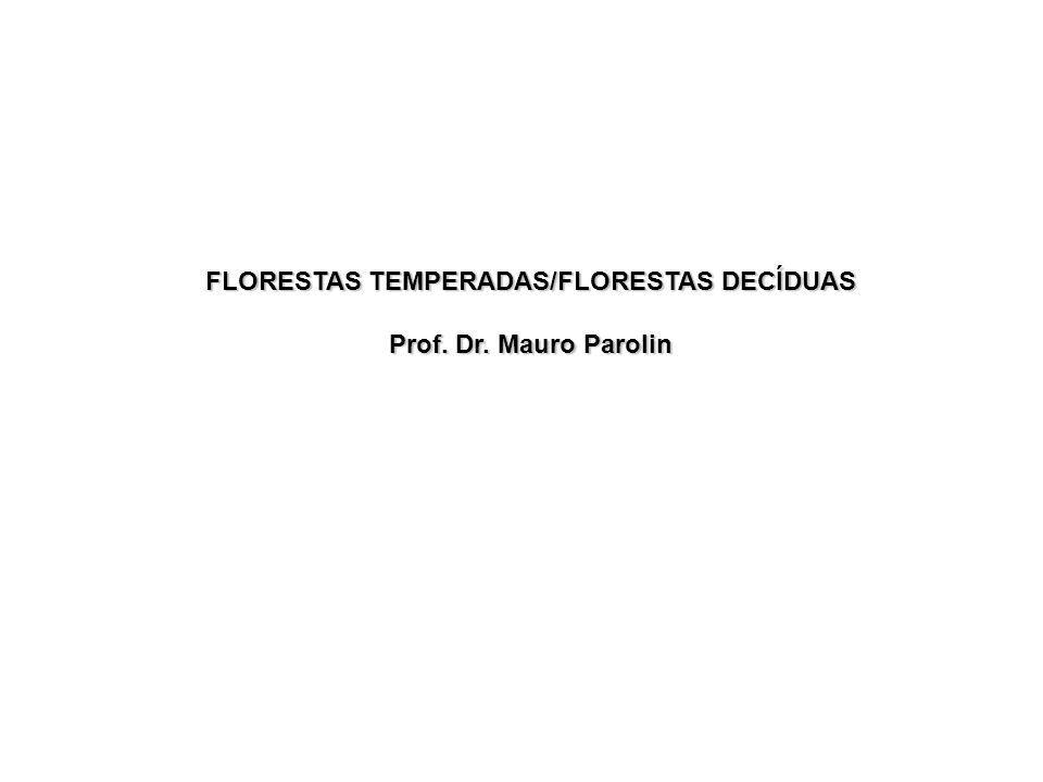 FLORESTAS TEMPERADAS/FLORESTAS DECÍDUAS