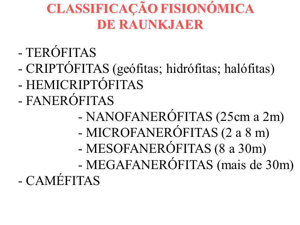 CLASSIFICAÇÃO FISIONÓMICA