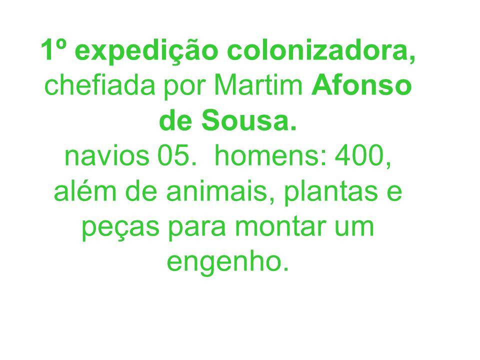 1º expedição colonizadora, chefiada por Martim Afonso de Sousa